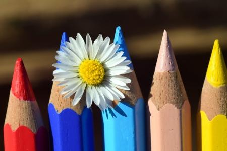 Kolorowe kredki - autor Oliwia